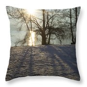 Sunshine In Winter Throw Pillow