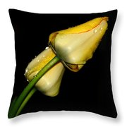Sunshine In Your Smile Throw Pillow
