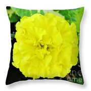 Sunshine Joy And Hope Throw Pillow