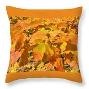 Sunshine Of Fall Throw Pillow