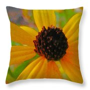 Sunshine On Susan Throw Pillow