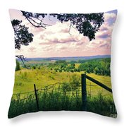 Sunshine On The Meadow Throw Pillow