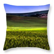 Sunshine On The Palouse Throw Pillow