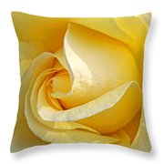 Sunshine Rose Throw Pillow