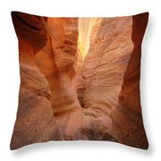Sunshine Through Slotted Canyon Throw Pillow by Janice Sakry
