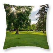 Sunshine Through The Trees Throw Pillow