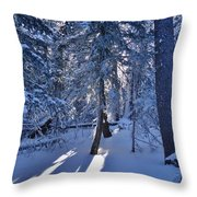 Sunshine Through Winter Trees Throw Pillow
