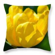 Sunshine Tulip Throw Pillow