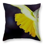 Sunshine Yellow Daffodil Throw Pillow