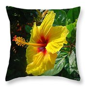 Sunshine Yellow Hibiscus With Red Throat Throw Pillow