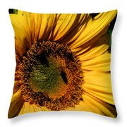 Sunshine's Blessing Throw Pillow