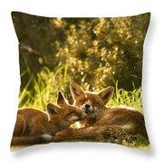 Sunshower Throw Pillow