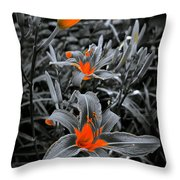 Suntouched Hearts Throw Pillow