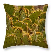 Super Cacti Throw Pillow
