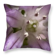 Super Close Up Of A Chive Flower Throw Pillow