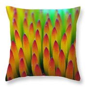 Super Macro Of Echinacea Cone Flower Throw Pillow