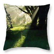 Super Sunbeam Throw Pillow