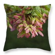 Super Sweet Winged Maple Seeds Throw Pillow