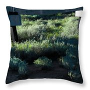 Supported Throw Pillow