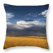 Sure Wish It Would Throw Pillow by Jon Burch Photography