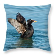Surf Scotter Male Wings Throw Pillow