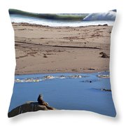 Surf Watching Squirrel Throw Pillow