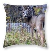 Surprised Deer Throw Pillow