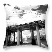 Surreal Augusta Georgia Black And White Infrared  - Riverwalk River Front Park Garden   Throw Pillow