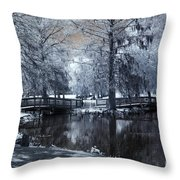 Surreal Dreamy Fantasy Nature Infrared Landscape - Edisto Park South Carolina Throw Pillow