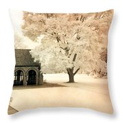 Surreal Ethereal Infrared Sepia Nature Landscape Throw Pillow