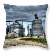 Surreal Grain Throw Pillow
