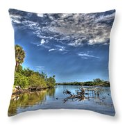 Surreal Intracoastal View Throw Pillow