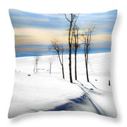 Surreal Snowscape Throw Pillow