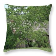 Surrounded By Summer Throw Pillow