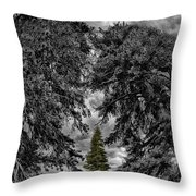 Surrounded Green Tree Throw Pillow