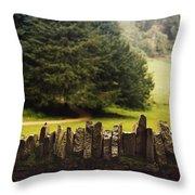 Surrounding The Pasture Throw Pillow