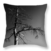 Survival Tree Throw Pillow
