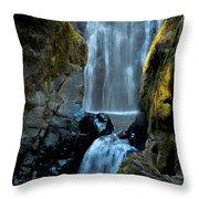 Susan Creek Falls Series 12 Throw Pillow