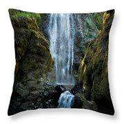 Susan Creek Falls Series 13 Throw Pillow