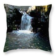 Susan Creek Falls Series 4 Throw Pillow
