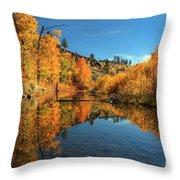 Susan River 11-3-12 Throw Pillow