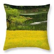 Susans Gold Pond Throw Pillow