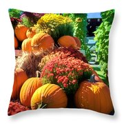 Sussex County Farm Stand Throw Pillow