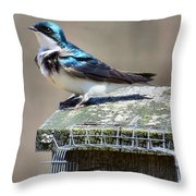 Swallow In The Wind Throw Pillow
