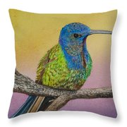 Swallow-tailed Hummingbird Throw Pillow