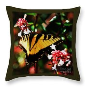 Swallowback Butterfly # 1 Throw Pillow