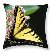 Swallowtail Butterfly And Milkweed Flowers Throw Pillow