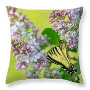 Swallowtail Butterfly Throw Pillow