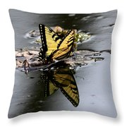 Swallowtail - Butterfly - Reflections Throw Pillow