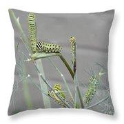 Swallowtail Feast Throw Pillow
